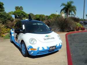 "авто на входе в See World - парк развлечений ""Морской мир"""