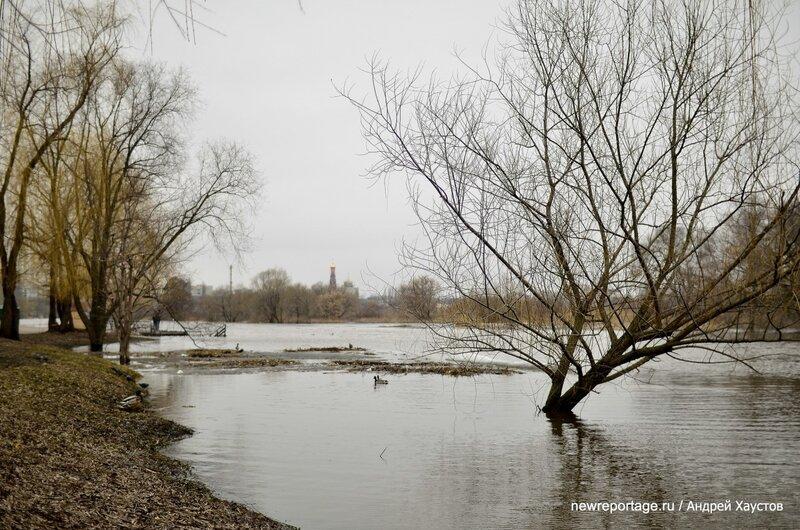Паводок в Тамбове