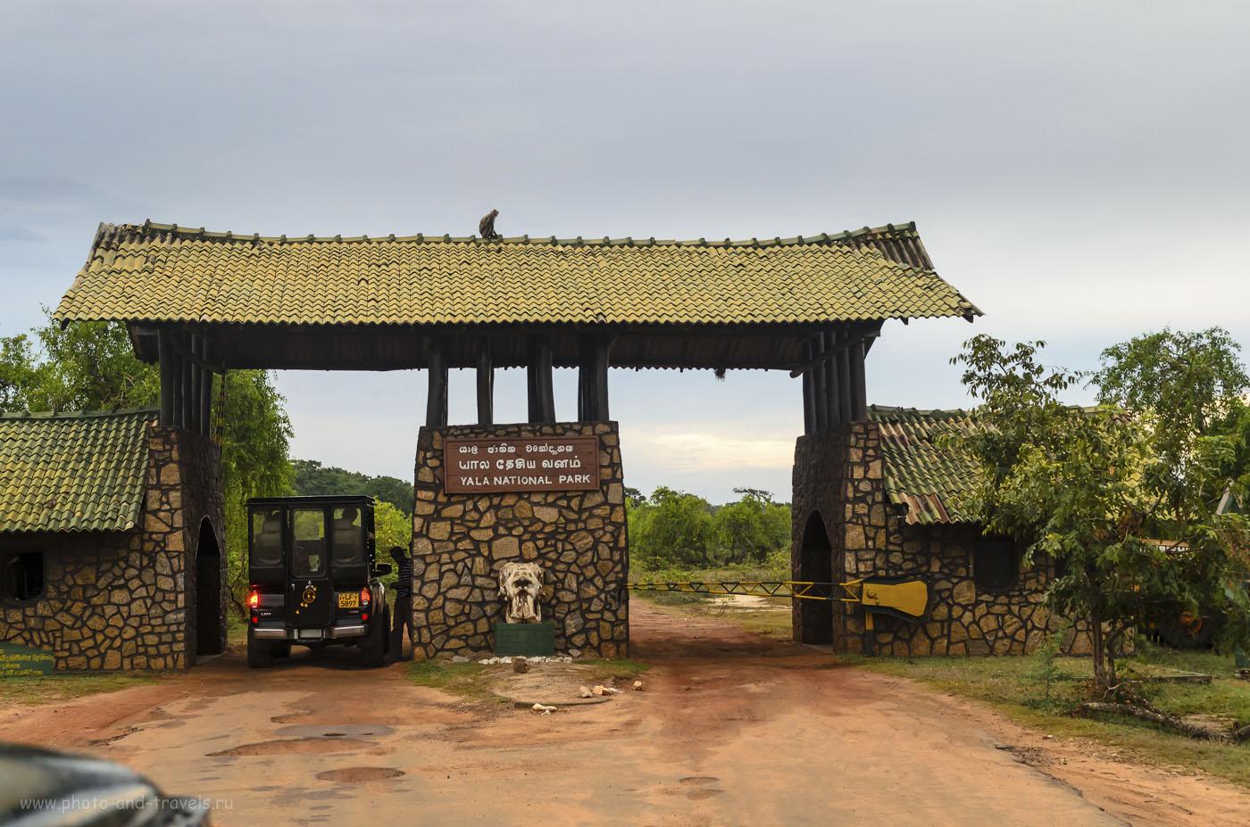 3. Шри-Ланка. Фото. Парк Yala National Park. Въездные ворота (320, 36, 7.1, 1/50)