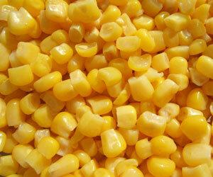 В Приморье собрано кукурузы на 30 тысяч тонн больше прошлогоднего уровня
