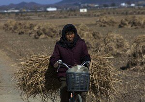 В КНДР женщинам снова запретили ездить на велосипедах