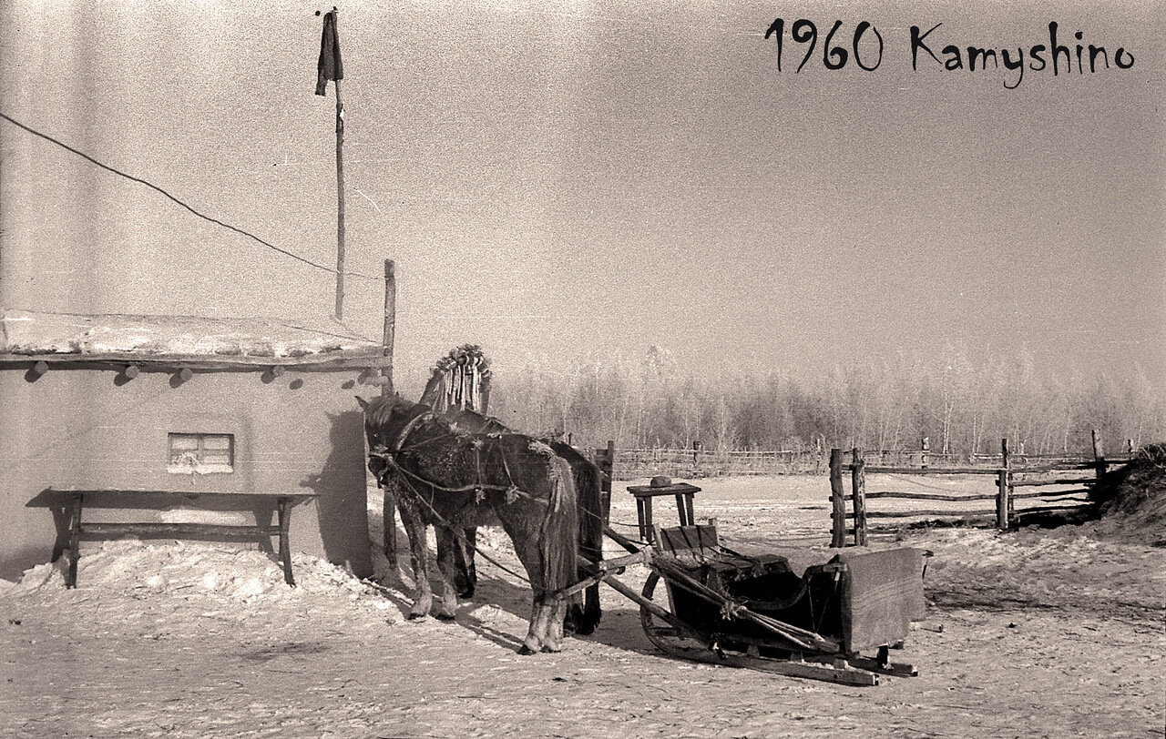 11. 1960. Село Камышино. Прииртышье