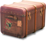 ldavi-wheretonowdreamer-luggage1b.png