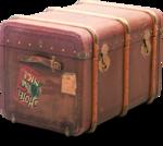 ldavi-wheretonowdreamer-luggage1b.png
