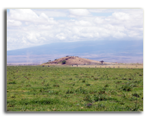 Marsh at the Amboseli National Park, Kenya, with vehicle safari  of the Kilimanjaro - Depositphotos
