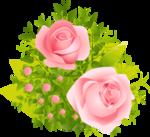 роза67.png