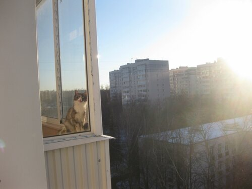http://img-fotki.yandex.ru/get/4137/131884990.3e/0_990c1_4c9d5a76_L.jpg
