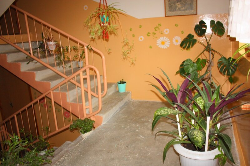 Украсить цветами каждый дом, каждый подъезд, двор!