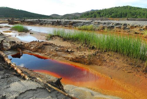 пдк сточных вод сбрасываемых в центральную канализацию