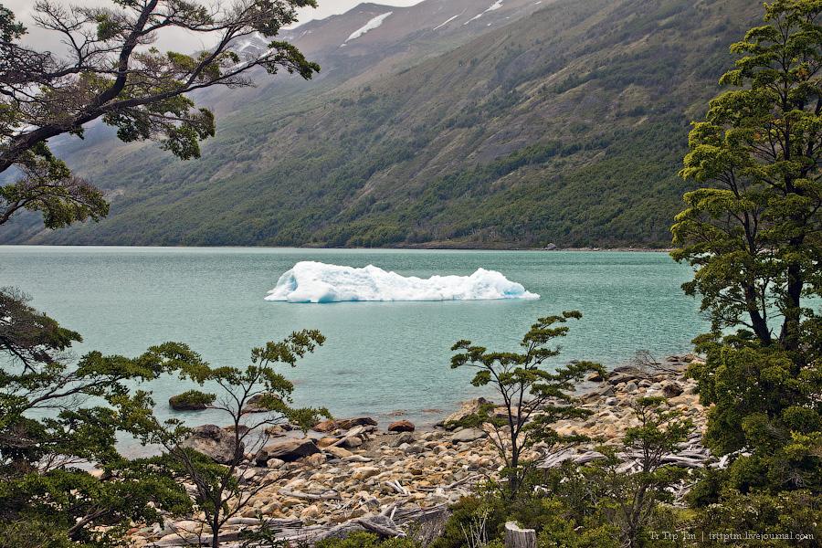 13. Устоявший перед потеплением. Ледник Перито Морено.