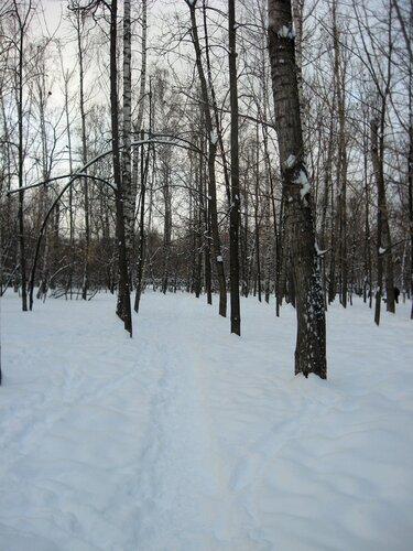 зима гольяново