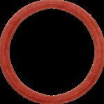 frame_circle_maryfran.png