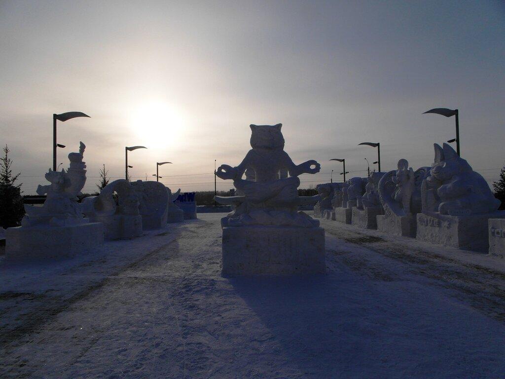 Форум снега