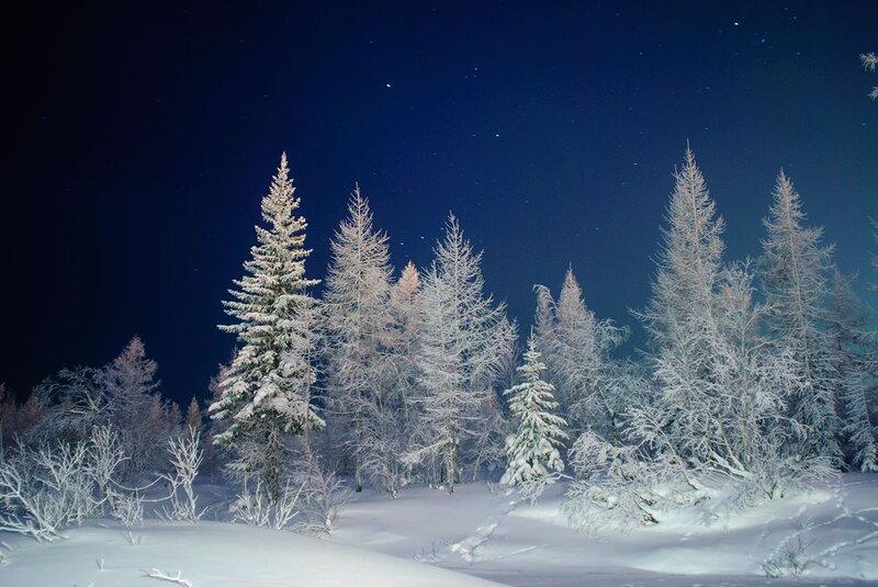 Ночное фото с подсветкой фонарем