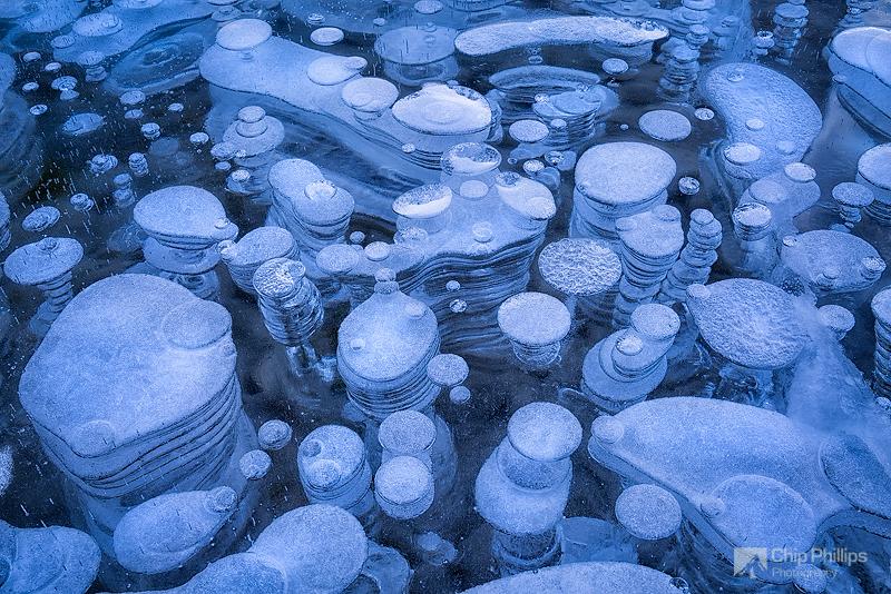 Ледяные пузыри озера Абрахам