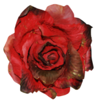 feli_btd_red rose.png