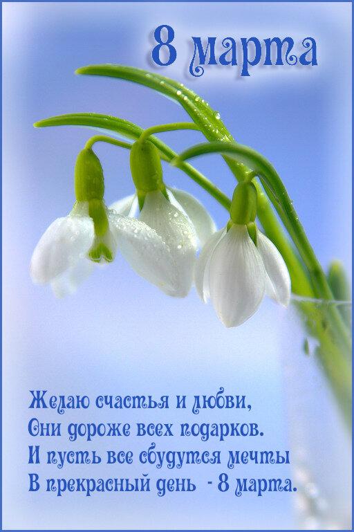 http://img-fotki.yandex.ru/get/4137/87459375.3d/0_969be_3f1bf81e_XL.jpeg.jpg