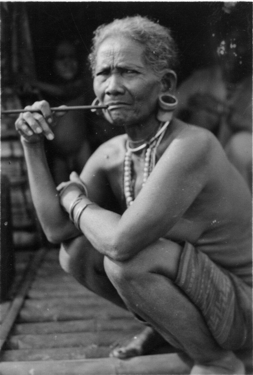 племена Мой