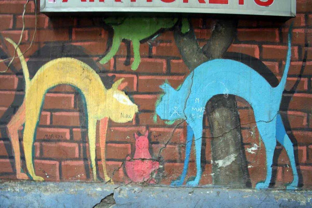 Закаблуцкая Елена, граффити не в духе Пиросмани