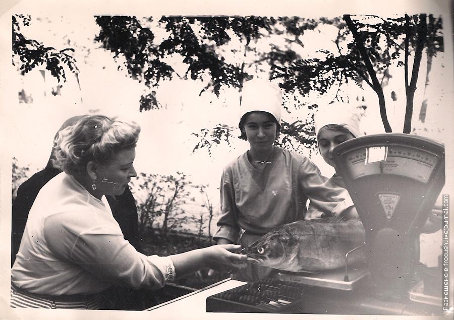 Волгоград фотография 1965 года продажа рыбы на улице