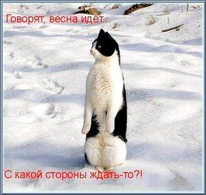 http://img-fotki.yandex.ru/get/4138/194408087.2/0_9194c_da574baf_M.jpeg.jpg