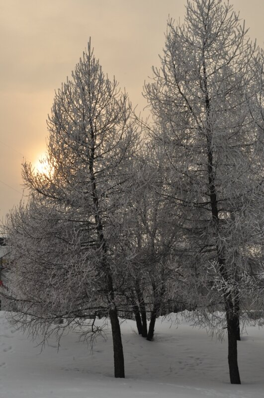 http://img-fotki.yandex.ru/get/4138/25708572.7e/0_90ece_6aceac62_XL.jpg