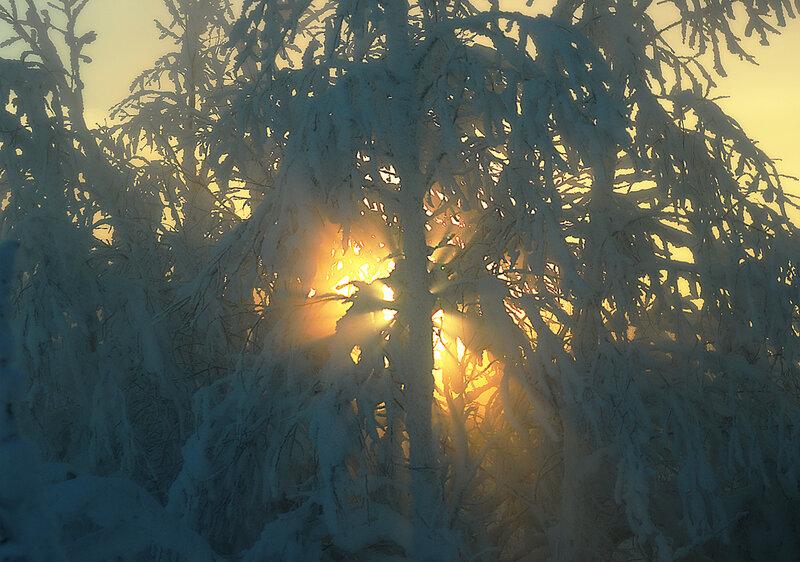 Зимние холодные лучи