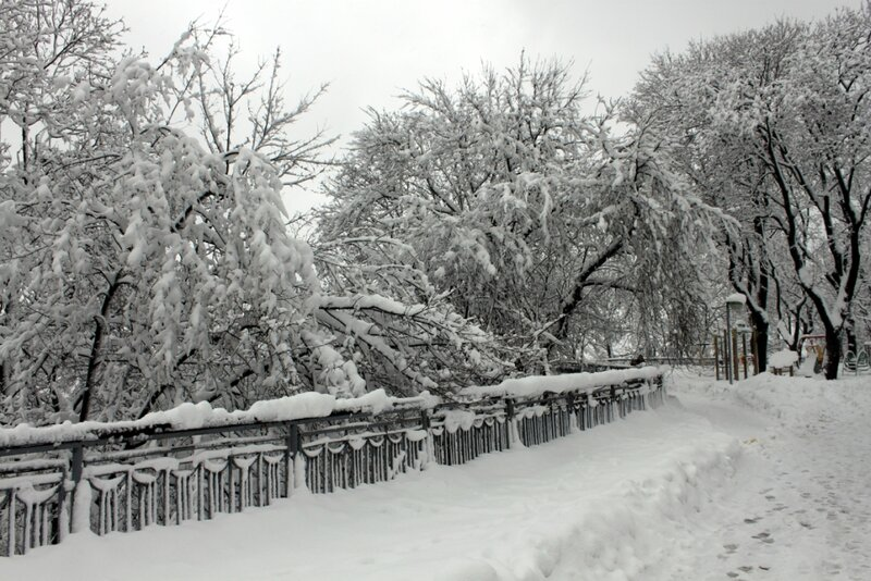 Владимирская горка зимой
