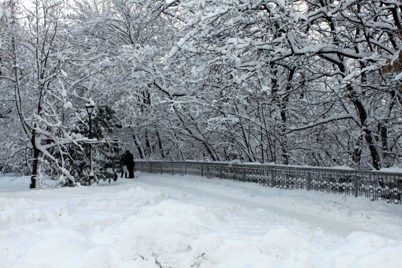 Мариинский парк зимой