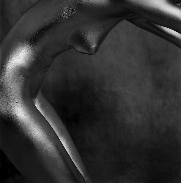 APHAEA - �������� ����� ���������� / Guido Argentini