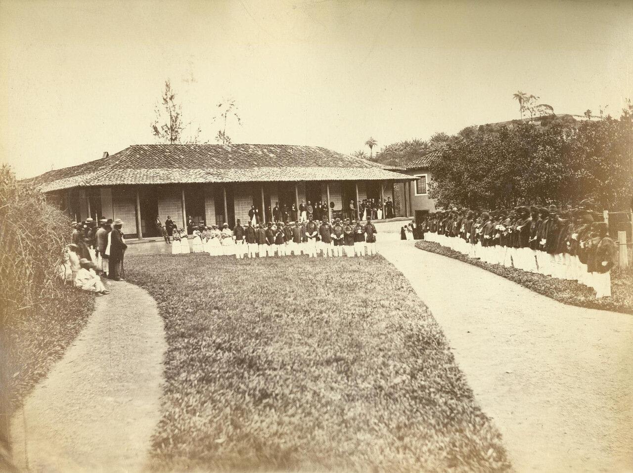Многие из рабочих в Морру-Велью начинали свою трудовую карьеру рабами. Эта фотография сделана на память в честь окончательного освобождения. ок. 1893 года