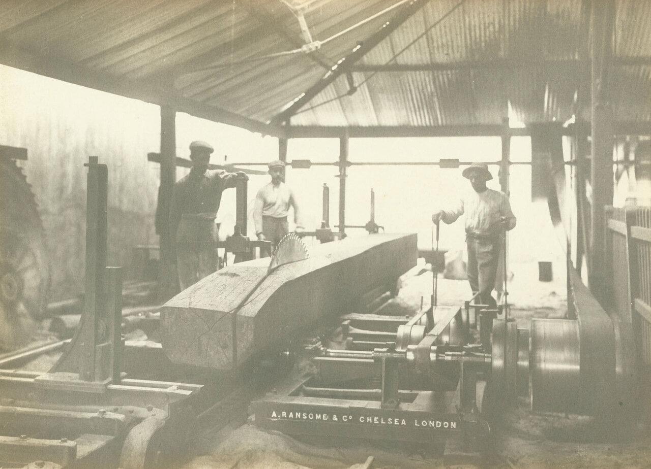 Сотрудники компании работают пилой в деревообрабатывающем цеху в Морру-Велью, ок. 1893 года