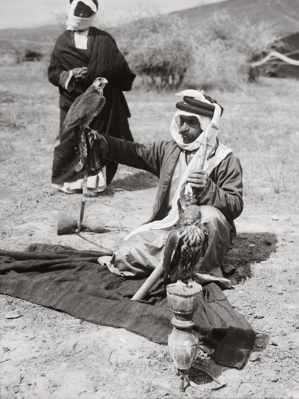 Бедуин с соколами для охоты.Трансиордания 1900-1920 гг.