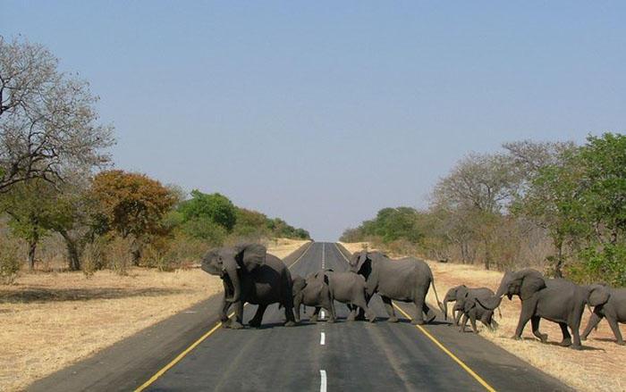 Как выглядят смертельно опасные дороги