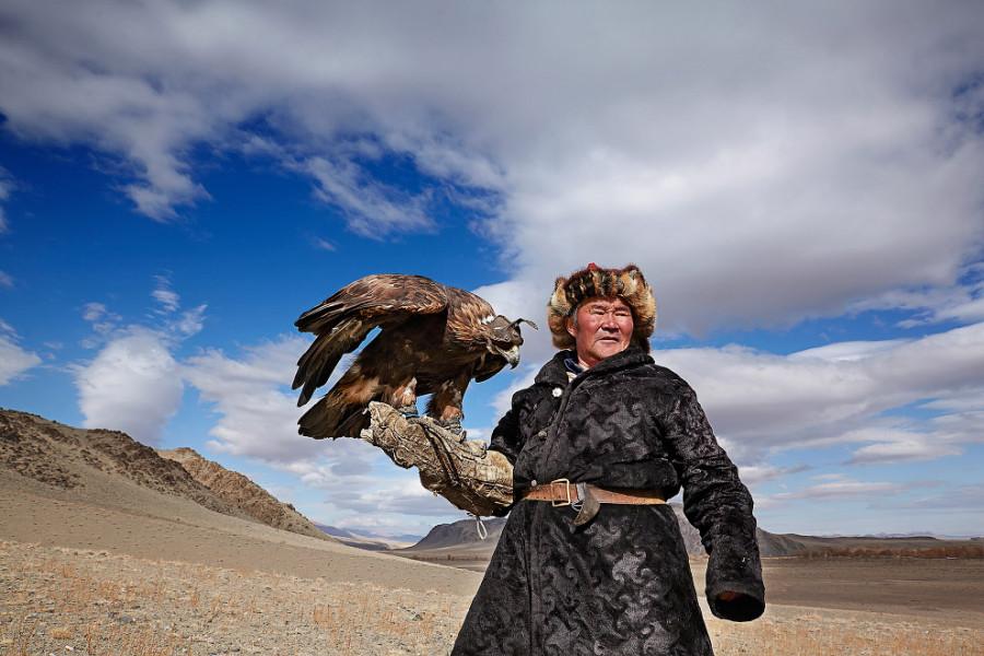 2. Чтобы между охотником и птицей создались близкие отношения, орла еще птенцом берут из гнезда в ди