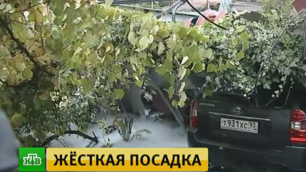 В клинике скончался пассажир разбившегося вСочи вертолета