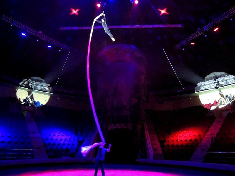 Прогон цирковой программы