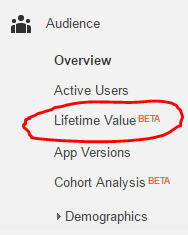 google-analytics-lifetime-value-1459251402.png