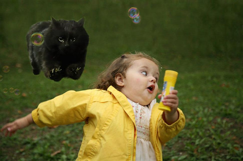 Еще одна девочка из мемов, убегающая от кота.