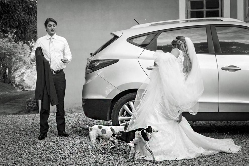 произведет невеста фото прикольные картинки работы