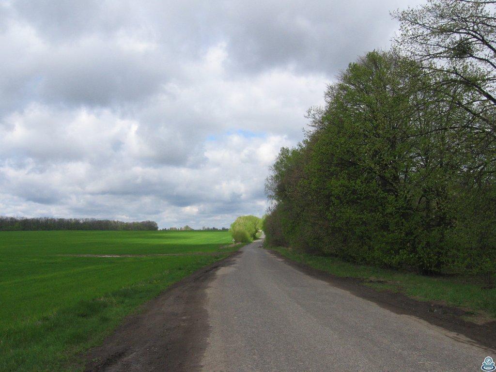 Дорога в Лебедин