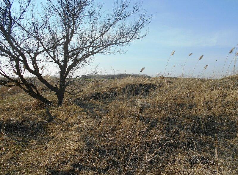 На Природе ... март ... DSCN1314.JPG