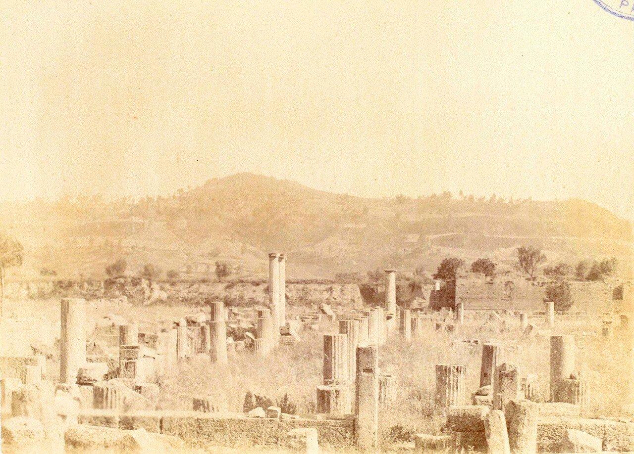 Храм Зевса. 1892