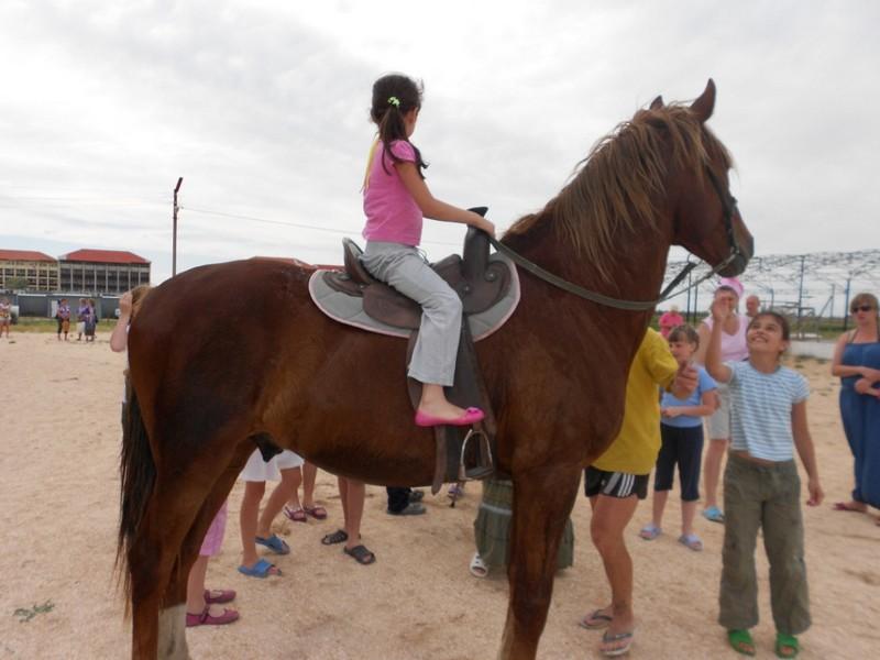 О страхе, восторге и упругом коне