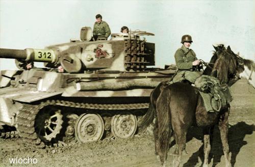Tiger-I-505.jpg