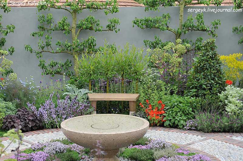 A modern Apothecary Garden (21).jpg