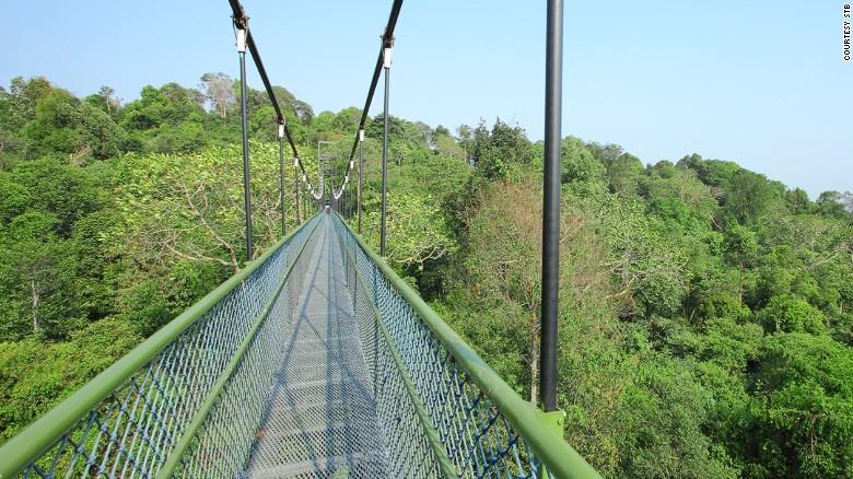 13. Невероятными видами можно полюбоваться с высокого воздушного моста, соединяющего Хендерсон Уэйвс