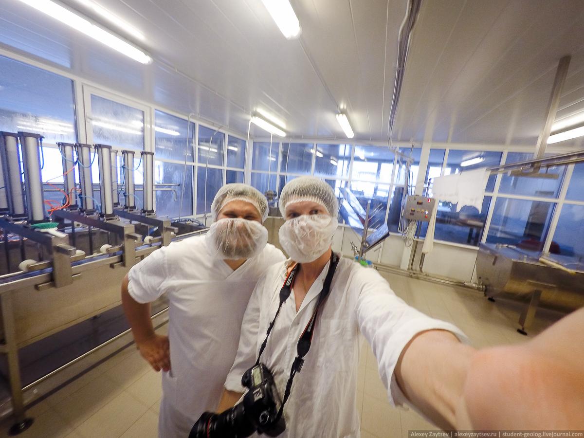 Чистота в сыроваренном цеху - на первом месте