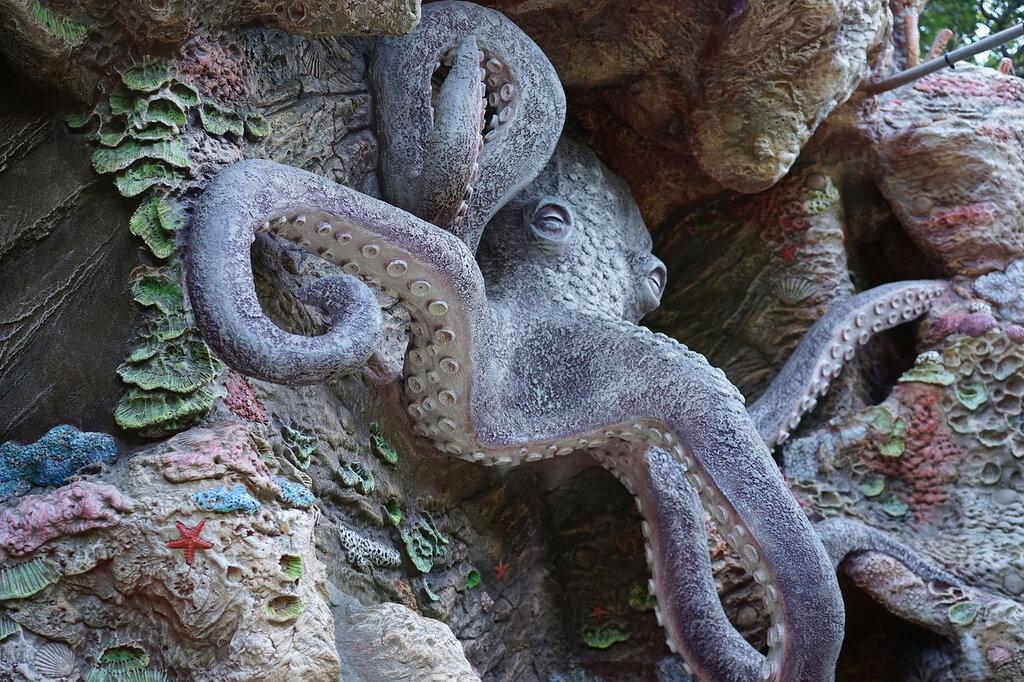 Осьминог на фасаде. Морской музей в Сафари-Парке,г.Геленджик.