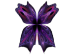 butterfly-8-bd-19-12-13.png
